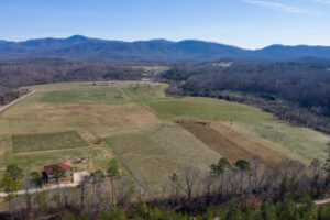 105 Acre Farm With Vineyard