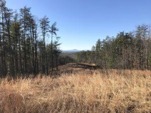 New Lake James Property