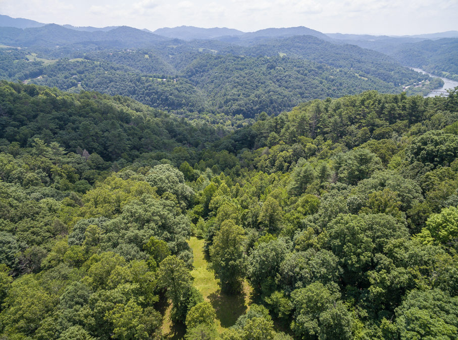 Two Private Parcels Near French Broad River