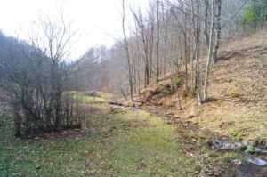 A Great Retreat Property in Ashe Co.