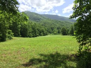 30 Acre Bugout Property