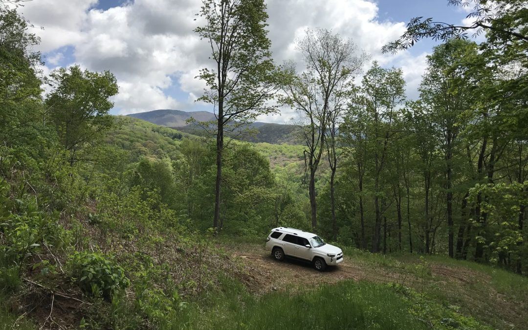 65 Acres, Abundant Water, Base of Roan Mountain