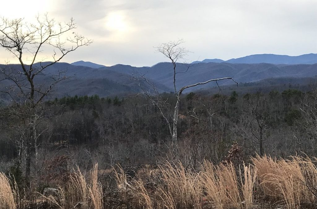 257 Acres Between Marion and Spruce Pine